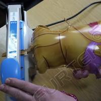 Запайщик пакетов настольный ручной CAS CXP-200/2